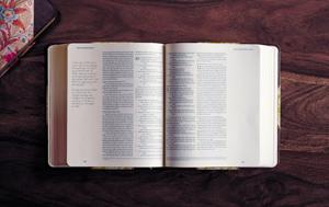 JournalingBible-Crossway